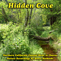 Hidden Cove: Northern California Coast Birds in Chorus