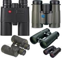 binocular display