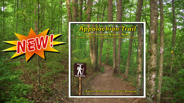 New Album: Appalachian Trail. Enjoy the sounds of birds while on virtual walks on the ledgendary trail.