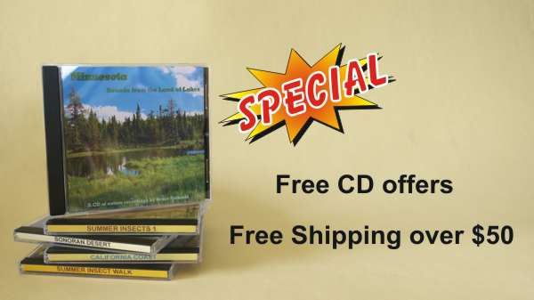 Buy 2 CDs Get 1 FREE, Buy 4 CDs Get 2 FREE, FREE Shipping Over $50